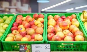 Bingo nastavlja pružati podršku domaćim poljoprivrednim proizvođačima kroz otkup diljem BiH